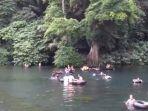 Video - Pulang Dari Pantai di Kabupaten Malang, Jangan Lupa Istirahat di Pemandian Sumber Sira