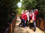 wisata-mangrove-surabaya.jpg