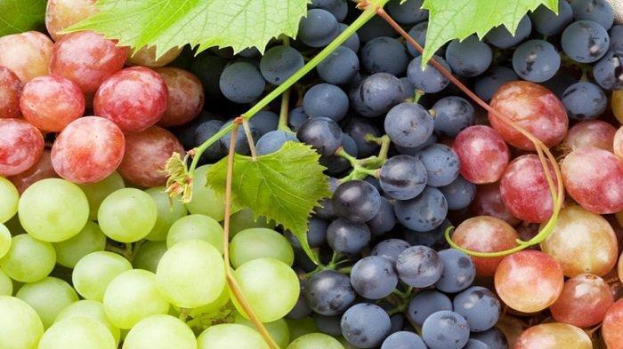 Anda Harus Tahu, Ini 5 Manfaat Kesehatan Buah Anggur untuk Bayi