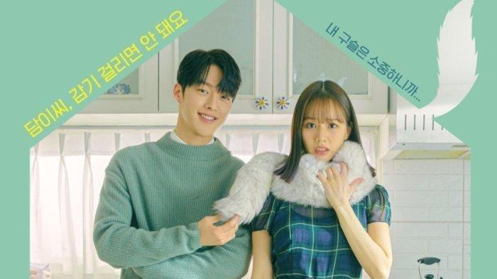 Rekomendasi 6 Drama Korea Tayang Mei 2021: Ada My Roommate Is a Gumiho hingga Doom At Your Service