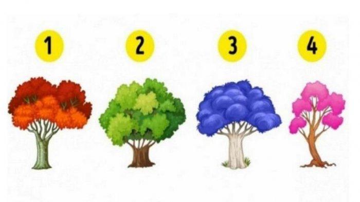 Tes Kepribadian: Pohon yang Kamu Pilih Ungkap Jenis Emosi yang Mendominasi Hidupmu