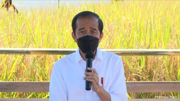 Mengenal Bipang Ambawang, Makanan Khas Kalimantan yang Dipromosikan Jokowi, Segini Harganya