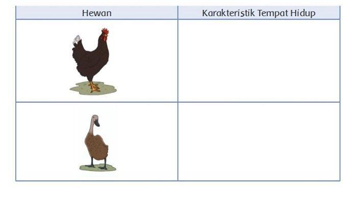 Apakah Keadaan Alam Berpengaruh terhadap Kehidupan Hewan? Kunci Jawaban Tema 3 Kelas 4 SD Subtema 2