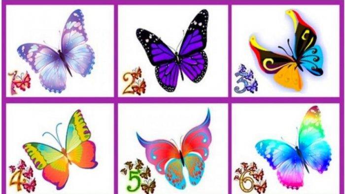 Tes Kepribadian: Pilih Kupu-Kupu Favorit dan Ungkapkan Sesuatu yang Hebat tentang Kepribadian Kamu