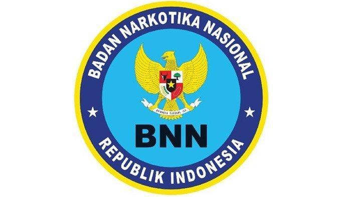 Segera Ditutup, Simak Info Lowongan Kerja BNN, Posisi Pekerja Sosial dan Mechanical Engineering