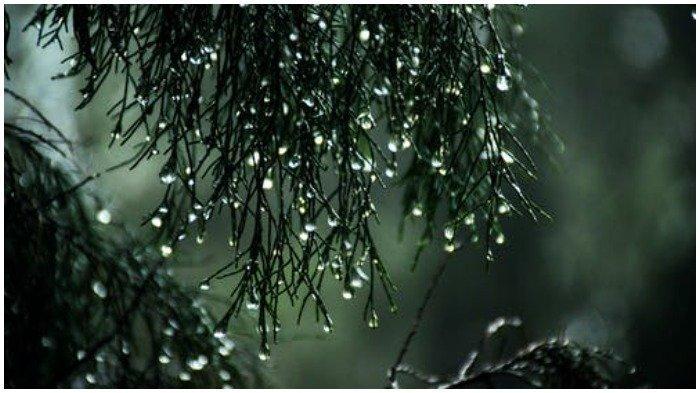 Prakiraan Cuaca 33 Kota Besar di Indonesia BMKG 12 Maret 2021: Denpasar Hujan Ringan di Siang Hari