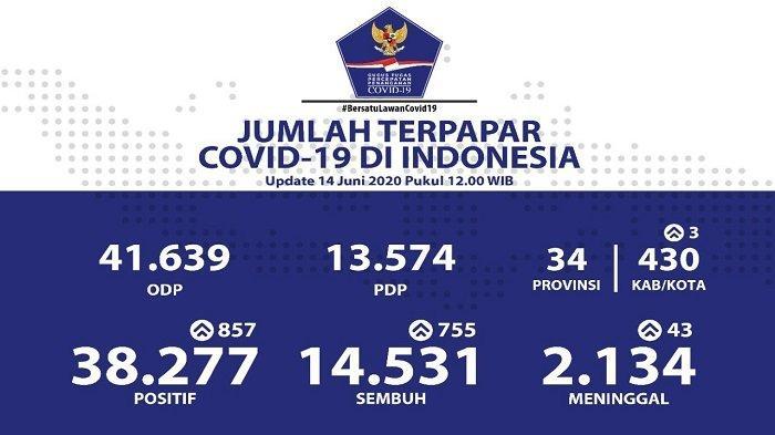 UPDATE Sebaran Virus Corona di Indonesia Minggu (14/6/2020): 4 Provinsi Catat 100 Lebih Kasus Baru
