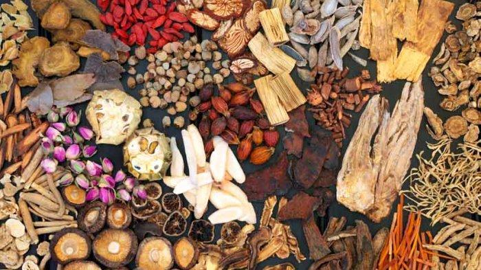 BPOM Umumkan Temuan 53 Daftar Obat Tradisional yang Mengandung Bahan Kimia Berbahaya