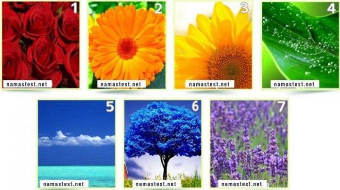 Tes Kepribadian: Warna Favorit yang Kamu Pilih Ungkap Detail Paling Akurat tentang Kepribadianmu