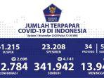 data-sebaran-corona-di-indonesia-minggu-1112020.jpg