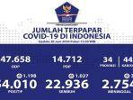 data-sebaran-virus-corona-di-indonesia-minggu-2862020.jpg