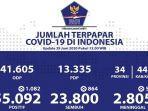 data-sebaran-virus-corona-di-indonesia-senin-2962020.jpg