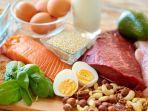 makanan-menyusui-salmon-ikan-telur-daging-susu.jpg