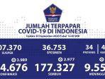sebaran-kasus-corona-di-indonesia-minggu-2092020.jpg