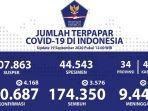 sebaran-kasus-corona-di-indonesia-sabtu-1992020.jpg