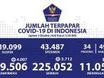 sebaran-kasus-corona-di-indonesia-sabtu-3102020.jpg