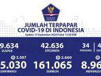 sebaran-kasus-corona-di-indonesia-selasa-1592020.jpg