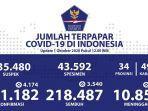 sebaran-virus-corona-di-indonesia-kamis-1102020.jpg