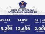 sebaran-virus-corona-di-indonesia-kamis-1162020.jpg