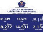 sebaran-virus-corona-di-indonesia-minggu-1462020.jpg