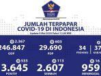 sebaran-virus-corona-di-indonesia-sabtu-952020.jpg