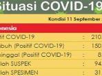 update-kasus-virus-corona-di-indonesia-jumat-1192020.jpg