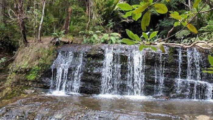 Air Terjun di Selandia Baru Tiba-tiba Beraroma Busuk, Ada Limbah Kotoran Manusia dan Hewan