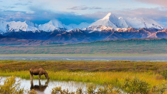 7 Keindahan Alam di Alaska yang Mirip Negeri Dongeng, Mulai Gunung hingga Taman Nasional
