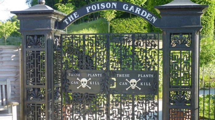 Mengenal The Poison Garden, Taman dengan Tanaman Beracun dan Berbahaya di Alnwick Inggris