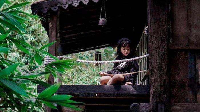 Camping Ground Aman Jernih Kabin di Bandar Lampung, Tawarkan Suasana Berbaur dengan Alam
