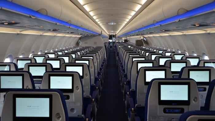 Kabin Pesawat ANA All Nippon Airways