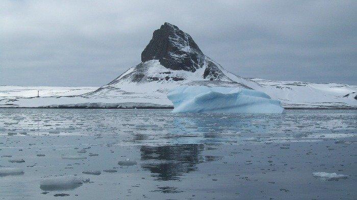 Ilmuwan Temukan Makhluk Aneh di Antartika Kedalaman 5.000 Meter