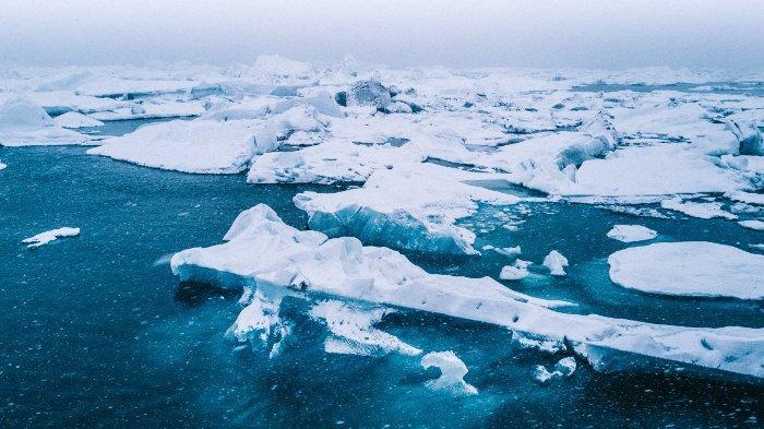 Penelitian Terbesar di Kutub Utara Berakhir, Ilmuwan Kembali dengan Kabar Menyedihkan