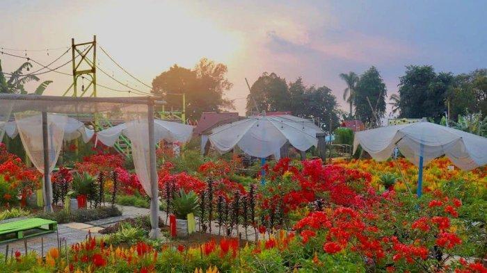 Harga Tiket Masuk Tapos Garden Terbaru 2021, Resto Berkonsep Taman Bunga di Kaki Gunung Pangrango