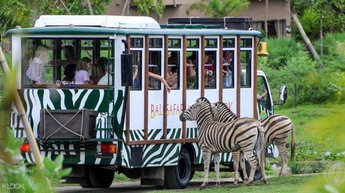 3 Kebun Binatang di Bali yang Wajib Disambangi Saat Liburan Bareng Keluarga