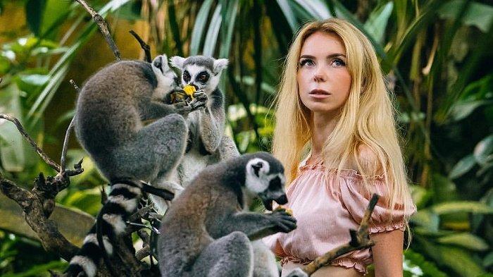 Promo Tiket Masuk Bali Zoo untuk Liburan Akhir Tahun 2020