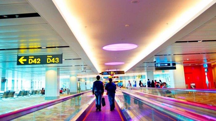 5 Rahasia Bandara yang Jarang Diketahui, Termasuk Kenapa Jendela di Airport Besar-besar