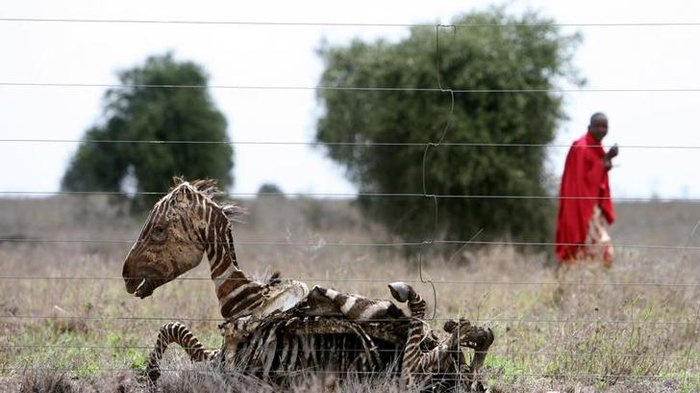 Miris! 8 Foto Ini Tunjukkan Seberapa Parahnya Kerusakan Alam yang Disebabkan Manusia