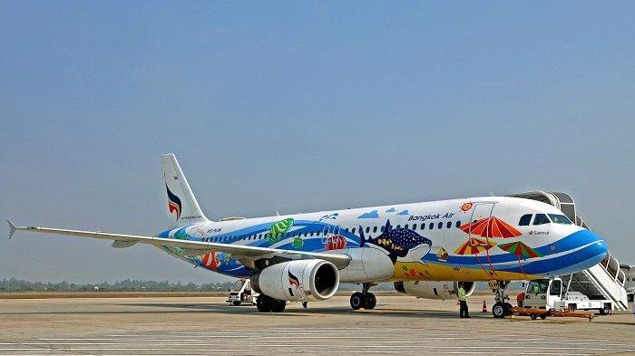 Maskapai Ini Luncurkan Tiket Pesawat Tanpa Batas, Penumpang Bebas Terbang Selama Setahun