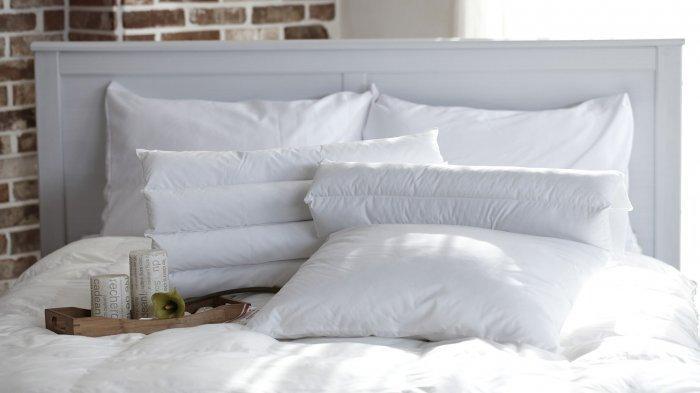 5 Hotel Murah di Cipanas, Puncak untuk Libur Akhir Pekan, Harga Mulai Rp 89 Ribuan