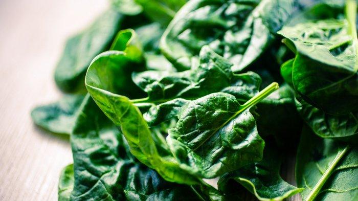 Menu Sahur: 3 Resep Tumis Sayur Praktis dan Mudah Dibuat, Rasanya Lezat dan Bergizi
