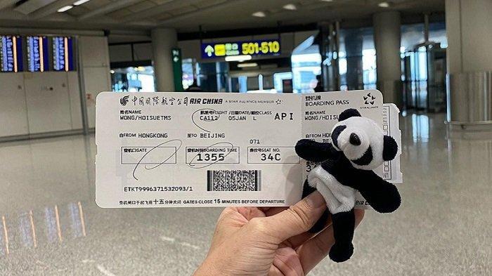 Liburan ke Hong Kong, Ini 5 Tiket Murah ke China dengan Tarif Mulai Rp 1,1 Juta