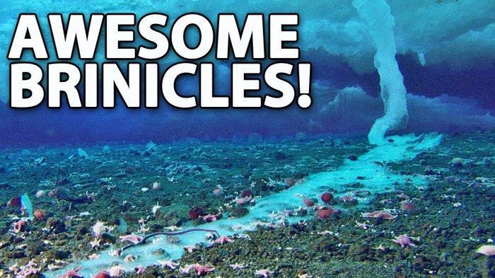 7 Fenomena Aneh yang Terjadi di Lautan, Termasuk Brinicle di Antartika
