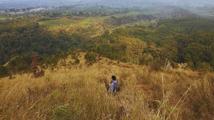 Budug Asu, Tempat Wisata di Kaki Gunung Arjuna yang Memukau
