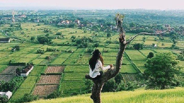 5 Tempat Wisata di Indonesia yang Cocok Dikunjungi Introvert, dari Danau Kaco hingga Bukit Belong