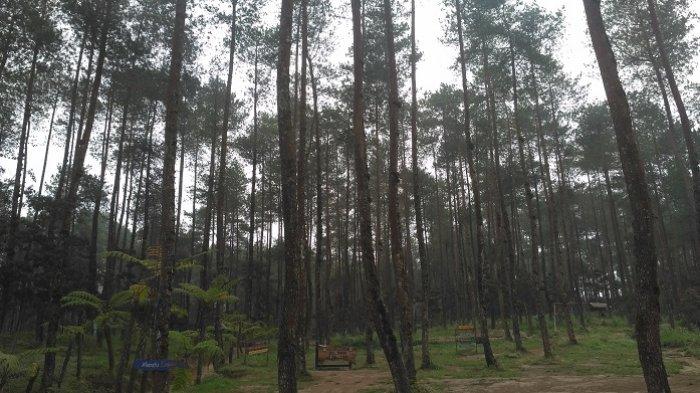 Suasana Bukit Grenden di Dusun Grenden, Kelurahan Pohgalang, Kecamatan Pakis, Magelang, Sabtu (20/10/2018) siang.
