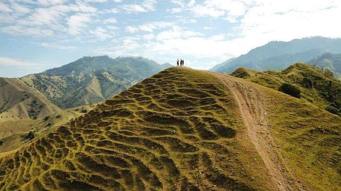 Melihat Pesona Bukit Ollon, Panorama Lanskap 'Swiss'nya Tana Toraja, Sulawesi Selatan
