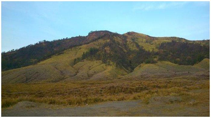 Bukit Teletubbies di Taman Nasional Bromo Tengger Semeru