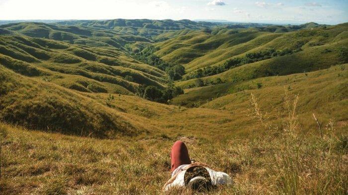Melihat Lanskap Menawan Bukit Warinding, Surga Savana di Pulau Sumba