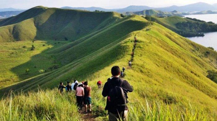 Bukit Teletubbies yang berada di Kawasan Wisata Gunung Bromo